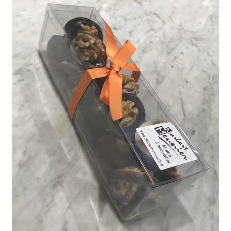 Réglette de noix de Grenoble aux chocolats